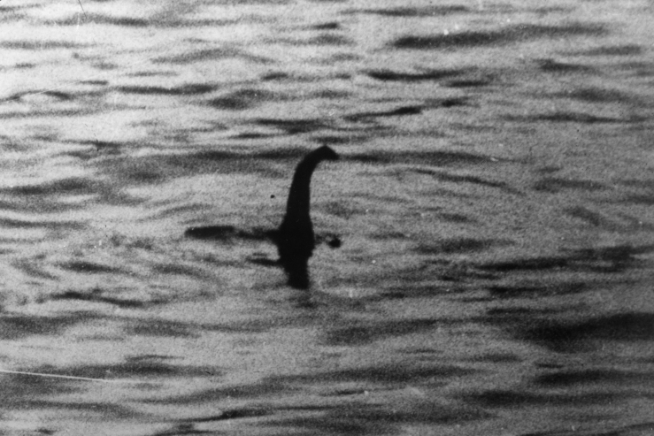 The Loch Ness Monster  PICTURE TAKEN IN 1934 OF THE LOCH NESS MO