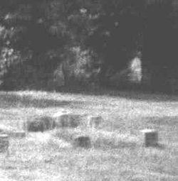 ghost-nun