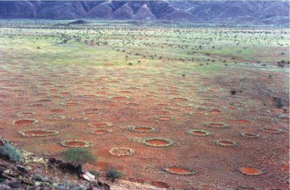 1024px-Fairy_circles_namibia